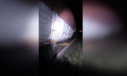 Camión rompio eje sobre Ruta 33 hacia Cañada