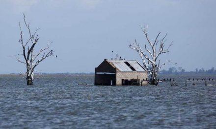 La Picasa: la obra de drenaje al Paraná costaría $ 10.000 millones