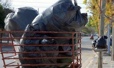 Recolección de Residuos para fin de año