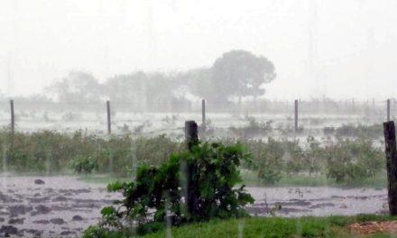 Se recupera el vecino que a consecuencia de la fuerte tormenta cayó de la moto en la zona rural