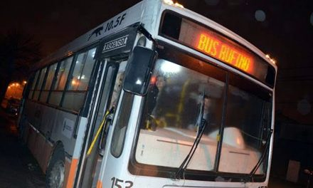 Nuevo ómnibus para el transporte público