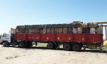 Más de 14 mil kilos de plástico vendido