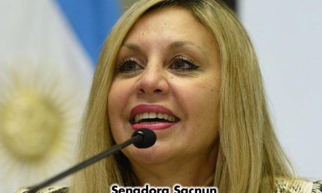 Primera Sesión Remota del Senado de la Nación Argentina