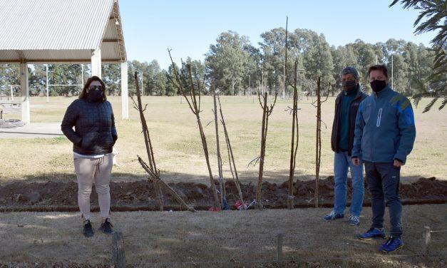 Entrega de árboles a clubes de Rufino