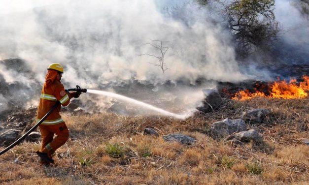 Alerta Amarilla por los Incendios Forestales en Córdoba, Bomberos de Rufino podrían ser convocados