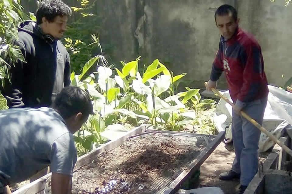 Primera cosecha de Compost en vivero municipal de Rufino