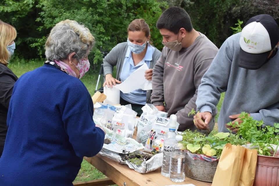 Entrega de semillas, plantines y compost