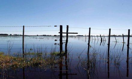El Senador Enrico pide al gobierno provincial que se cumpla la ley que exime a productores inundados por desborde de lagunas Picasa y Melincué del pago de impuestos inmobiliarios
