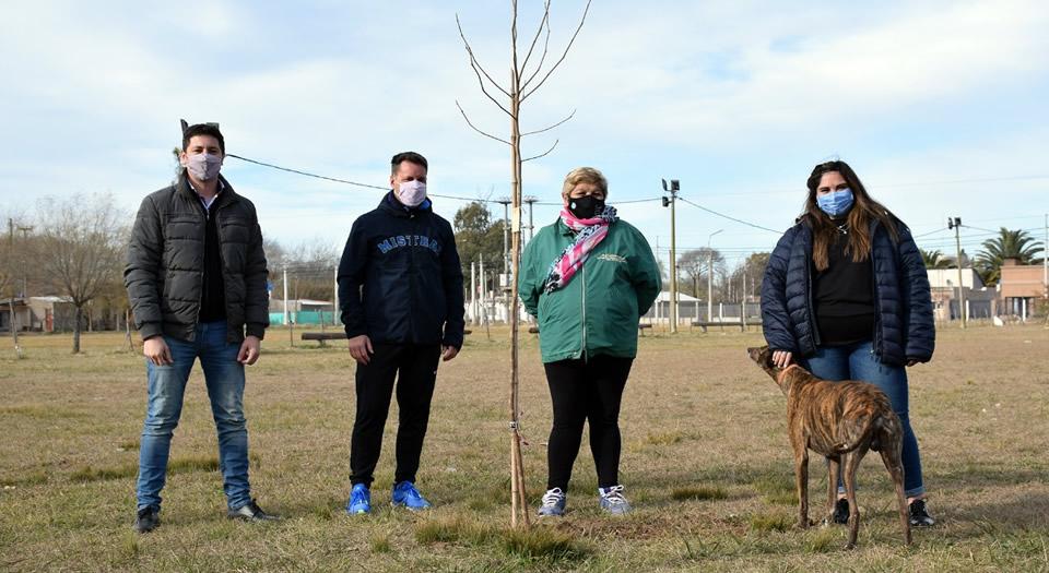 Nueva entrega de árboles a clubes de Rufino