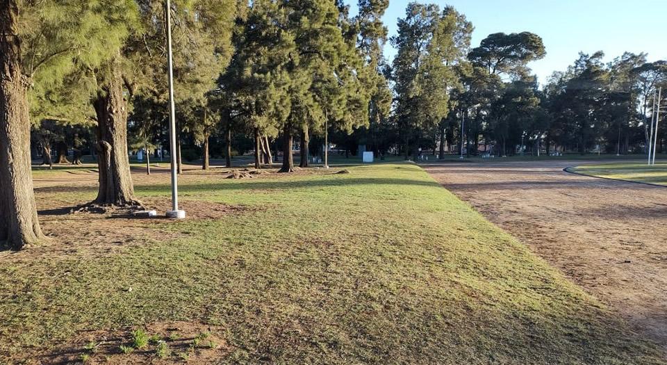 Luego de los festejos de anoche en el parque, los estudiantes recolectaron los residuos generados