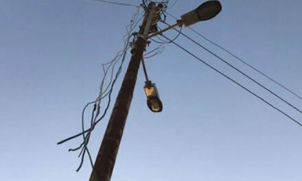 Cooperativa denunció robo de cables y herrajes de cobre